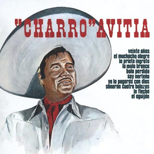 20 Anos by Francisco 'Charro' Avitia