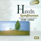 HAYDN, F.J.: Symphonies Nos. 66, 90, 91, 92 and 98 (Cappella Coloniensis, Leitner, Linde) by Various Artists