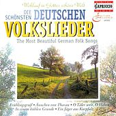 Choral Music (German) - SCHUMANN, R. / SILCHER, F. / GLUCK, F. / FRANZ, R. / LYRA, J.W. / MENDELSSOHN, Felix / FESCA, F.E. / BRAHMS, J. / SCHULZ, J.A. by Various Artists