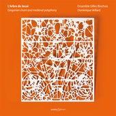 GREGORIAN CHANT AND MEDIEVAL POLYPHONY (L'Arbre de Jesse) (Ensemble Gilles Binchois) by Various Artists