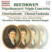 BEETHOVEN, L. van: Triple Concerto / Choral Fantasy (Rosel, Funke, Timm, Leipzig Radio Chorus, Dresden Philharmonic, Kegel) by Various Artists