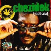 Herbalist by Chezidek
