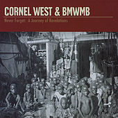 Never Forget: a Journey of Revelations von Cornel West