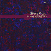 So Much Magnificence by Steve Gold
