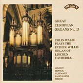 Great European Organs No.15: Lincoln Cathedral by Colin Walsh