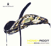Sound Echo Location by Honeyroot
