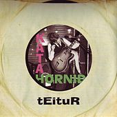 Káta Horni∂ by Teitur