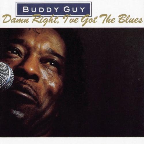 Damn Right, I've Got The Blues by Buddy Guy