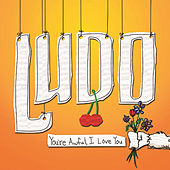 You're Awful, I Love You by Ludo
