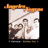 Y Volvere: Exitos Vol. 1 by Los Angeles Negros