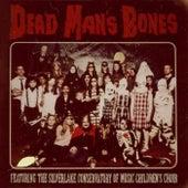 Dead Man's Bones by Dead Man's Bones