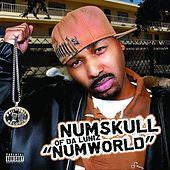 Numworld von Numskull