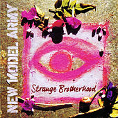 Strange Brotherhood by New Model Army