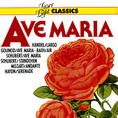 Classics - Ave Maria by Various Artists