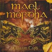 Cluain Tarbh by Mael Mórdha