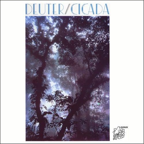 Cicada by Deuter