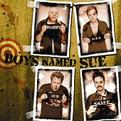 The Hits Vol. Sue! by Boys Named Sue