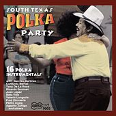 South Texas Polka Party by Various Artists