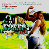 Forro Brasil Vol 3 - 20 Sucessos Do Forro by Various Artists