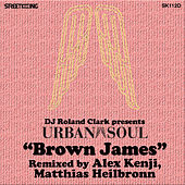 Brown James (Alex Kenji & Matthias Heilbronn Remixes) by DJ Roland Clark