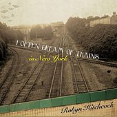 I Often Dream of Trains in New York by Robyn Hitchcock