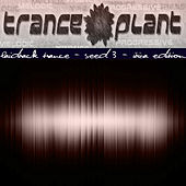 Tranceplant - Laidback Trance - Seed 3 Ibiza Edition by Various Artists
