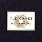 Feral Harmonic by Old Canes