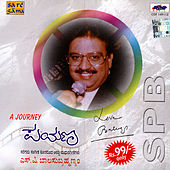Payana - A Journey by Various Artists