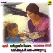 Nadhi/Bhargavi Nilayam by Various Artists