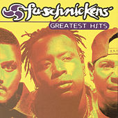 Greatest Hits by Fu-Schnickens