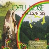 Joyful Noise by Various Artists