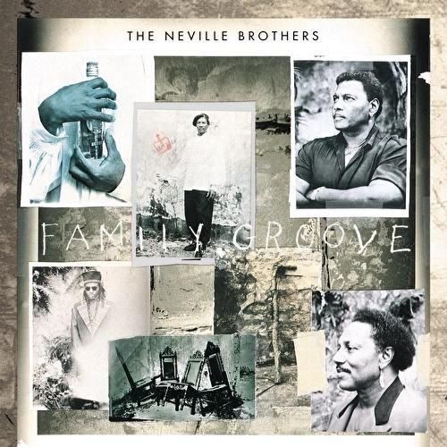 Family Groove by The Neville Brothers