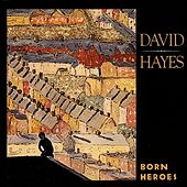 Born Heroes by David Hayes