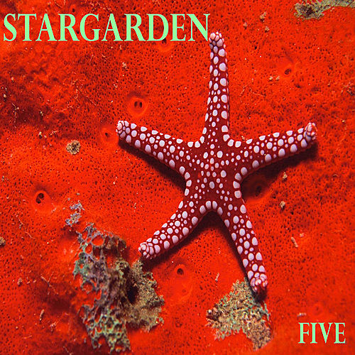Five by Stargarden