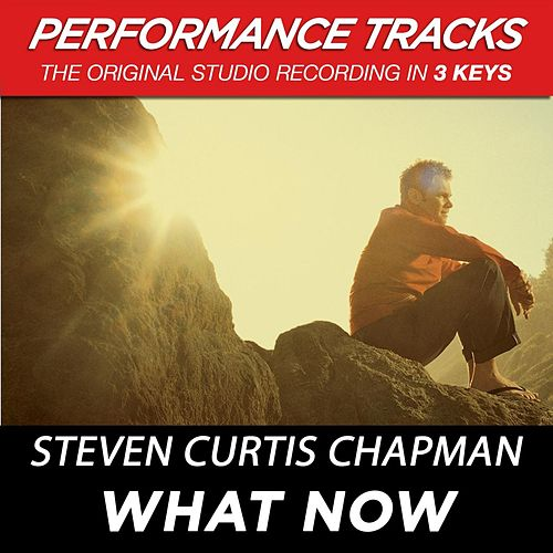 What Now (Premiere Performance Plus Track) by Steven Curtis Chapman