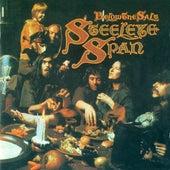 Below The Salt by Steeleye Span