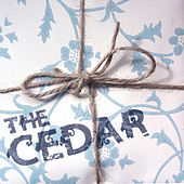 I`m Always Explaining To Mum How It Is Different Here by Cedar