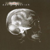 God Man by David Sylvian