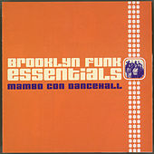 Mambo Con Dancehall by The Brooklyn Funk Essentials