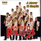 A Mover el Guayin by Banda Pelillos