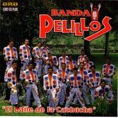 El Baile de la Cachucha by Banda Pelillos