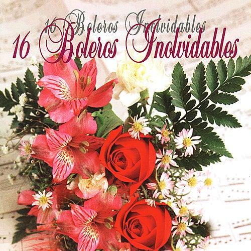 16 Boleros Inovidable by Various Artists