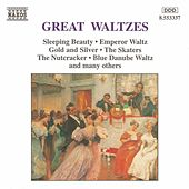 Great Waltzes by Various Artists
