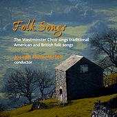 Folk Songs by Various Artists