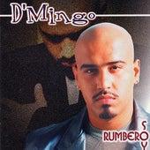 Rumbero Soy by D'Mingo