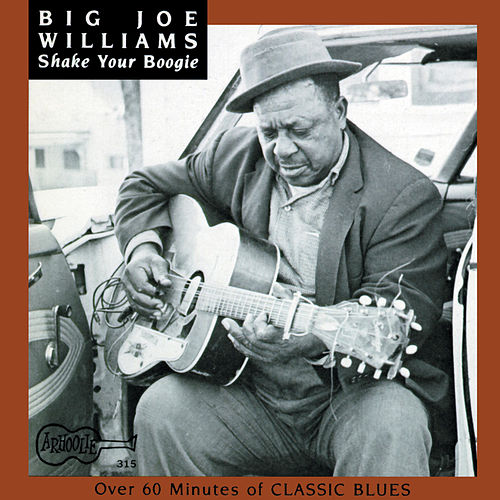 Shake Your Boogie by Big Joe Williams