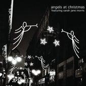 Angels At Christmas by Sarah Jane Morris