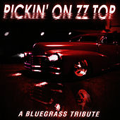 Pickin' On ZZ Top by Pickin' On