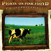 Pickin' On Pink Floyd: A Bluegrass Tribute by Pickin' On
