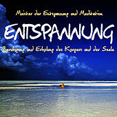 Entspannung-Beruhigung und Erholung des Körpers und der Seele by Meister der Entspannung und Meditation